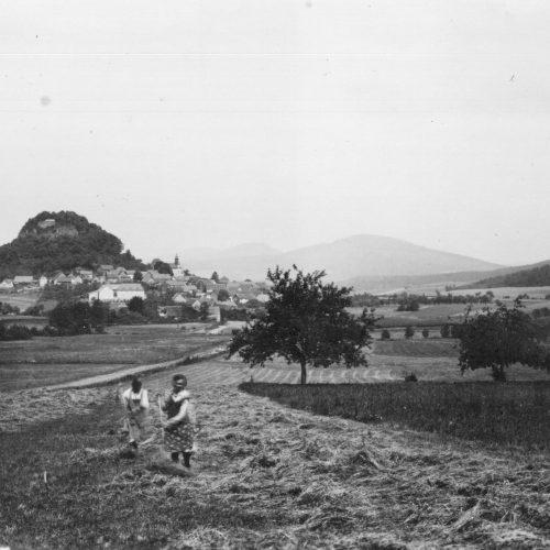 HEUERNTE 1936 || Dieses Bild aus der Serie Professor Werners zeigt das Dorf über die Au hinweg.